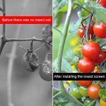 VINTONEY Filet de protection contre les insectes pour légumes, plantes et fruits 2,5 m x 10 m