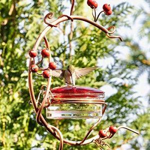 ZURITI Nichoirs De Jardin pour Balcons, Mangeoire à Colibris Suspendue en MéTal pour Jardin ExtéRieur, Mangeoire à Oiseaux Fruits Et Baies, pour Jardin Nichoirs déCoratifs pour Balcons