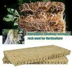 Bingdong Cubes multifonctions en laine de roche – Blocs de culture sans terre – Mini compresse de base agricole hydroponique