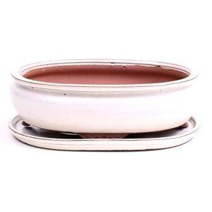 Bonsai 41086 Bol ovale avec soucoupe Crème 30,5 x 24,5 x 10,5 cm
