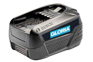 GLORIA Batterie 18V 4,0 Ah Bosch Power For All