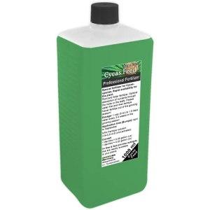GREEN24 Engrais pour fougères palmées Cycas, engrais liquide de qualité supérieure de la ligne professionnelle 1000 ml.