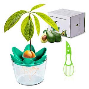 Herefun Avocado Plant, Trancheuse d'Avocat Kit de Plantation d'Avocat Cultivez Votre Propre Avocat, Kit Jardinage Convient pour la Culture de Balcon Intérieur Cadeau pour Amie (Récipient Inclus)