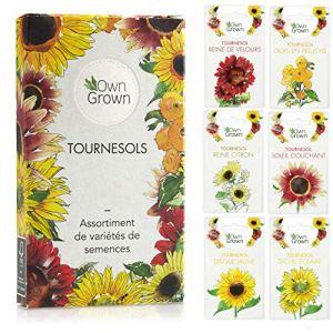 Kit de graines de tournesol: Graines de tournesol de qualité supérieure avec 6 variétés de belles graines de fleur d'extérieur – Set de jardinage graines de fleurs Tournesol par OwnGrown