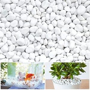 LuluDa Gravier Galets Pierres Petits Cailloux de Marbre Blanc Naturels Cailloux Décoratifs Blancs pour AquariumDécorations de JardinPots de Fleurs et Plantes Vase, 500g