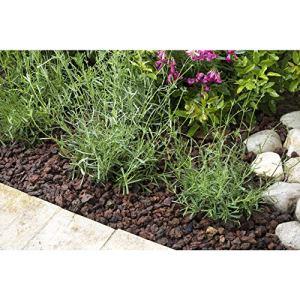 R'garden   Pouzzolane   Pouzzolane arbustes, conifère, Vivace, Plante d'intérieur   Réduit Les arrosages   Facilite Le Drainage