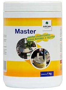 sipcam pâtes cicatrizante Master (1kg)