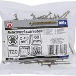 BGS Diy 80996 | Vis multifonctions | profil en T (pour Torx) T20 | 4,0 x 60 mm | 100pièces