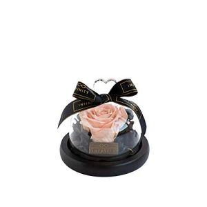 Dome Rose Large – 1 véritable rose rose conservée dans un verre