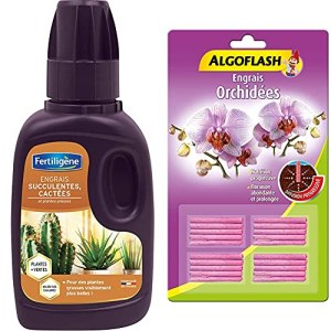 Fertiligène Engrais Cactus et Succulentes, 250 ML & ALGOFLASH Engrais bâtonnets Orchidées, Action jusqu'à 3 mois, 20 bâtonnets, ABATORC