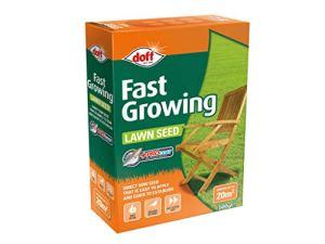Graines de gazon à croissance rapide 500g