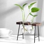 RRMMAN Lot de 3 pots de fleurs en verre pour plantes hydroponiques de bureau avec support en bois rétro