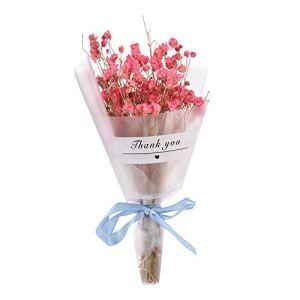 Souffle De Fleurs Séchées Natural Gypsophila Naturellement Fleurs Séchées Décor Floral Le Bouquet De Fleurs Fête De Mariage