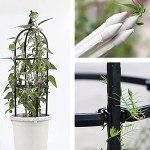 Treillis d'obélisque de Jardin en Fer pour Plantes grimpantes Treillis de Support de Fleur de Jardin en Plastique avec Crochet d'étagère Rose et Plantes Support de Treillis en Forme de U pour l'esca