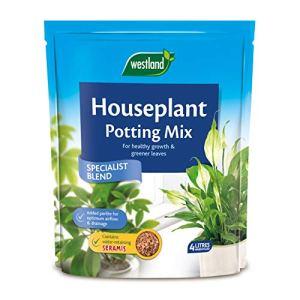 Westland Terreau pour plantes d'intérieur