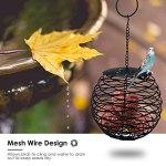 Yagosodee Mangeoire à oiseaux en maille métallique à suspendre pour oiseaux et boules de graisse
