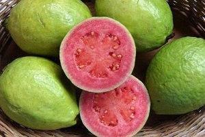 Genipap 60pcs: Acheter de vraies graines d'arbres fruitiers de goyave Plante Fruit psidium guajava Grow Fan shi liu