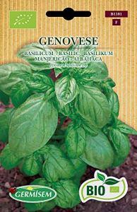 Germisem Bio Graines Basilic GENOVESE