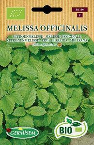 Germisem Bio Graines Mélisse officinale MELISSA OFFICINALIS