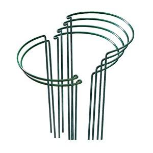 Nuryme Lot de 6 supports de plantes semi-circulaires en métal pour plantes en pot, tomates, rose, pivoine