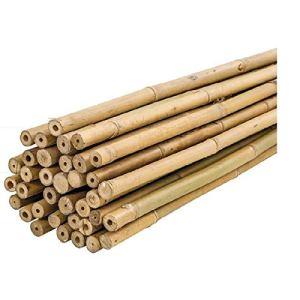 Plantawa Tuteurs en bambou, Tuteurs en bambou Ø 6 – 8 mm, lot de 25 unités, utilisation agricole pour fixer des plantes, des légumes et des arbres 150 cm