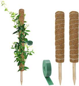 Richaa 2 Pièces Poteau Totem Support Plante,Tuteur Plante Coco avec Ruban Cohésif Auto Adhérent 1M pour Creepers de Plante Grimpante de Jardin à la Maison (15,7 Pouces)