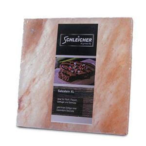 Schleicher® Lot de 5 pierres de sel pour barbecue Taille XL 20 x 20 x 2,5 cm