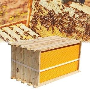WSVULLD 7pcs Auto Honey Hologe Beehive Cadres + Abeillette Boiseries de la Maison en Bois Boites avec Durable et imperméable, Cire à la Bouillie Double King King King King House Stalls, Une Ruche