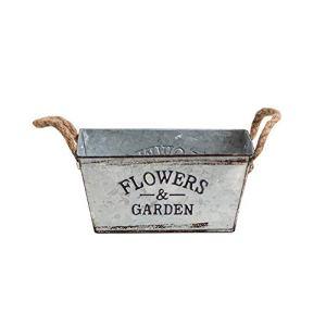 Yongirl Pot de fleurs vintage en métal, seau européen simple en fer, design non poreux anti-fuite pour culture hydroponique et fleurs séchées