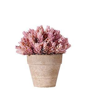 YWRD Plante Grasse Cactus Artificiel Plantes d'extérieur Artificielle Cactus Plantes en Pots Décor à la Maison Plante en Pot Intérieur Plantes Décoratives Pink
