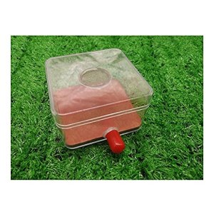 HCKLYTN AntHouse Zone d'activité transparente en acrylique pour nids de fourmis, insectes, villa, plâtre, fourmis – Cadeau d'anniversaire – 8 x 8 x 5 cm
