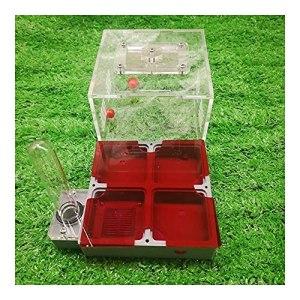 HCKLYTN Nid de fourmis grand format avec tubes à essai et pare-soleil pour fourmis – Cadeau d'anniversaire – Couleur : 4 grilles