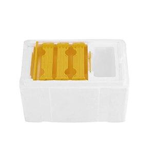 Qagazine Boîte de ruche pour ruche – Pour la ruche – Pollinisation d'apiculture – Copulation pour apiculteurs