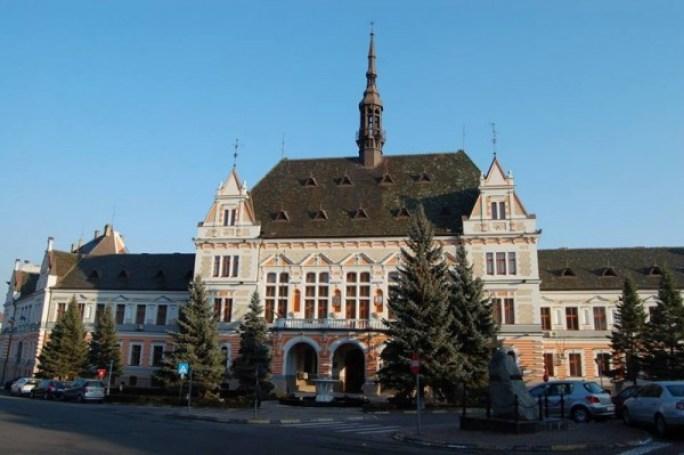 consiliul judeţean