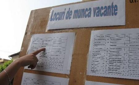 Peste 500 de locuri de muncă disponibile în județul Hunedoara