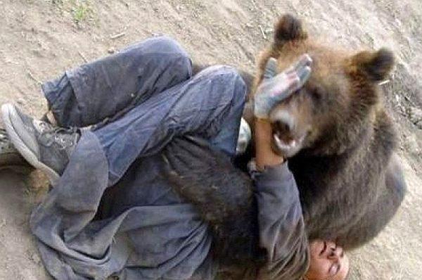 Cioban muşcat de urs, atacul fiind în Retezat
