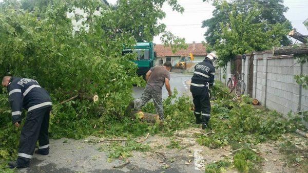 Furtuna a făcut pagube la Uricani