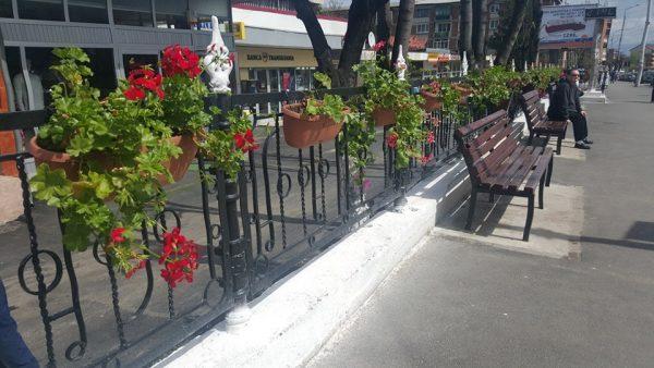 Lupeniul devine, pe zi ce trece, un frumos oraș al florilor