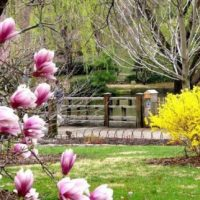 Vremea în luna aprilie 2021, pe regiuni, până de Florii. Prognoza METEO pentru următoarele 2 săptămâni