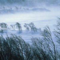 AVERTIZARE METEO: Vânt PUTERNIC, în mare parte din țară, până luni după masa. La munte, rafalele vor depăși 90km/h și va ninge