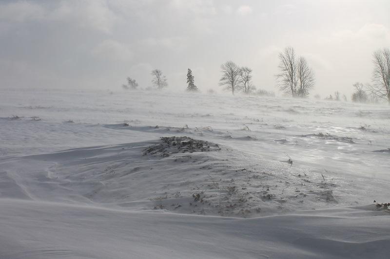 Avard Woolaver, snow, winter,
