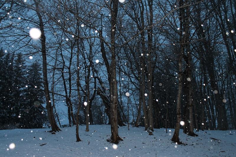 Avard Woolaver, flash, snow,