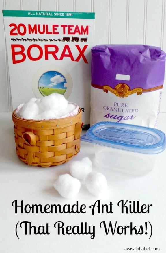 Homemade Ant Killer - Best of 2016