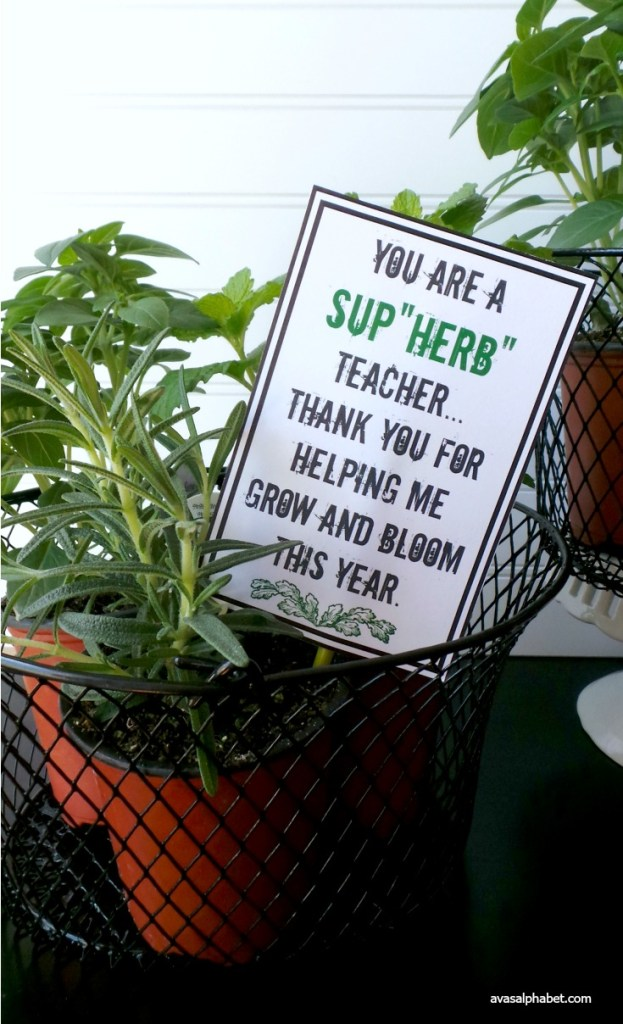 Teacher Appreciation Herb Garden Gift from Ava's Alphabet