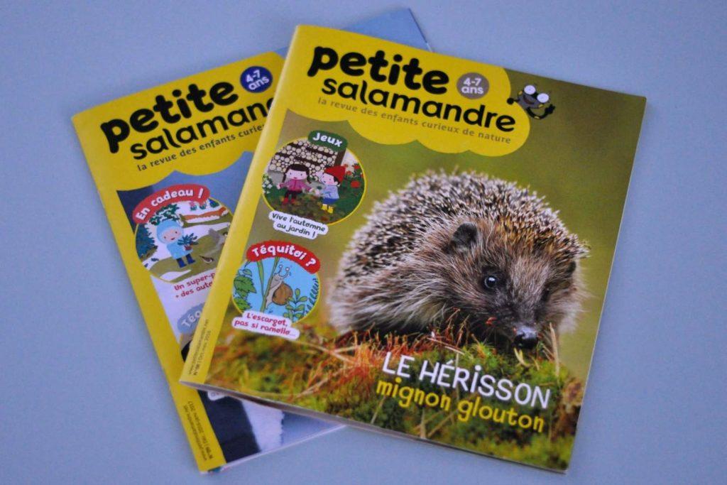 """Billet """"Ils ont du panache #2"""" paru sur www.avecpanache.ch"""