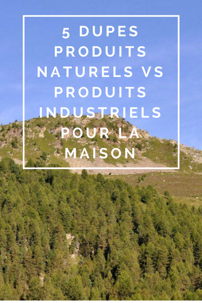 """Billet """"5 dupes produits naturels vs produits industriels pour la maison"""" paru sur www.avecpanache.ch"""