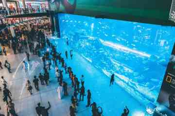 The Dubai Mall - The world's largest shopping mall