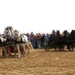 chars-romains-IMGP3321