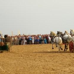 chars-romains-IMGP3341