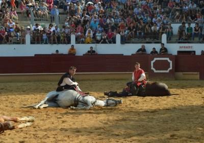 Le dressage des chevaux de cinéma - Spectacle équestre Aventure au galop
